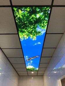 Wantix - Prolutix textiel fotoframe in systeemplafond