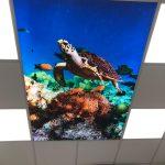 Textiel LED fotoplafond in tandartsenpraktijk - wolkenplafond