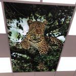 Prolutix Textiel LED fotoplafond - wolkenplafond